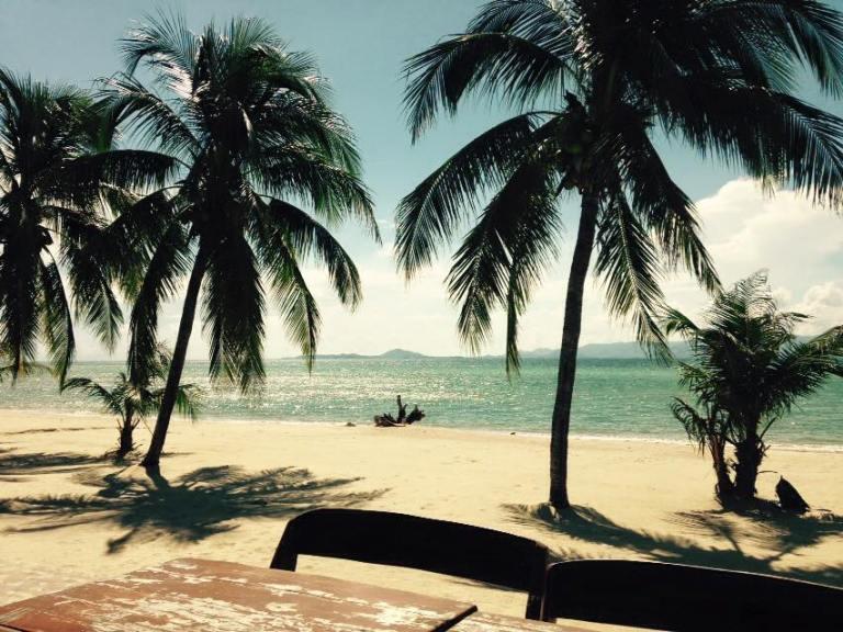 macs bay palm